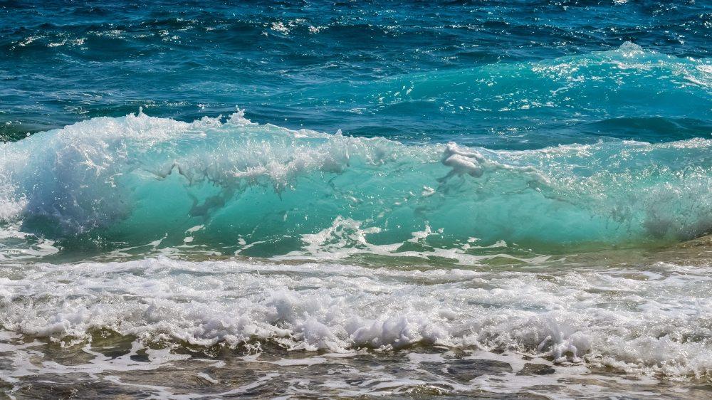 beach-blue-horizon-462089